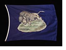Buffalo Bill Parade Flag
