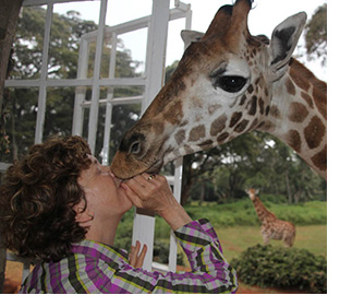 Photo of the author kissing a giraffe
