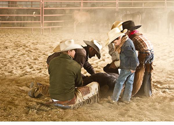 A little cowboy checking his spurs
