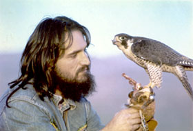 Danny Verrier and one of his Peregrine Falcons